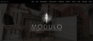 Read more about the article Studio MODULO – projekt logo, strona internetowa, pozycjonowanie strony